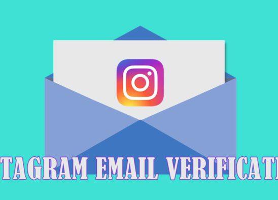 instagram verification email